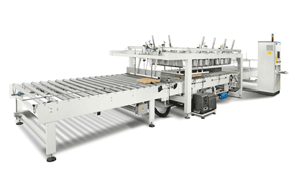 Automatic Die-Cutted Cartoning Packaging Systems