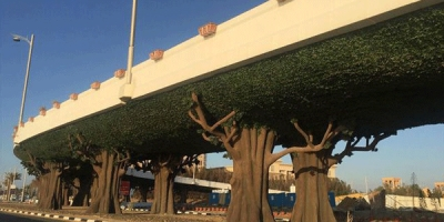 Dubai to enhance emirate with beautification projects